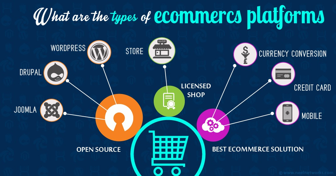 What are the types of Ecommerce Platforms